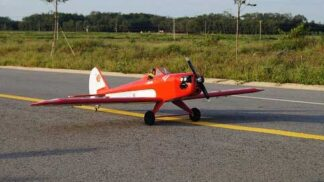 Fly Baby 20 cc size Red/white version